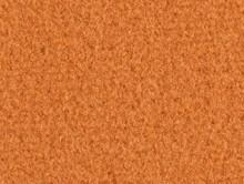 Acadie Orange | Kreş-Anaokul