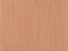 Standard Plus 3098 | Pvc Yer Döşemesi | Homojen